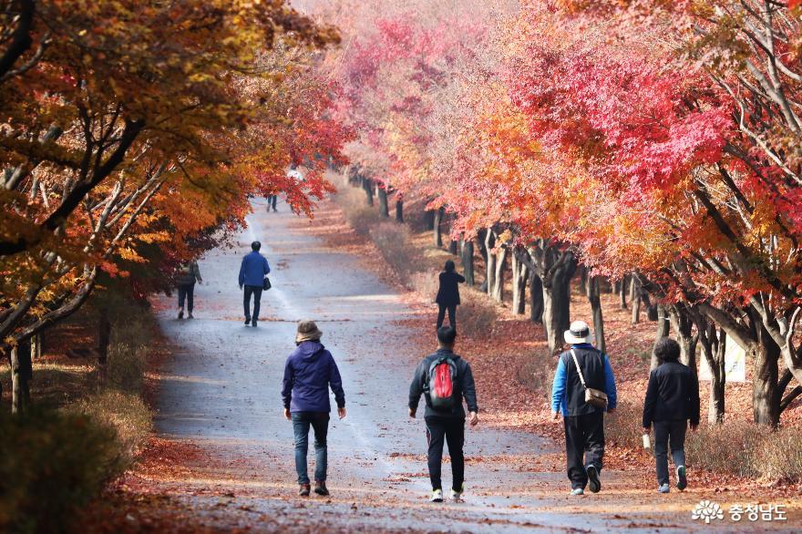 민족의 성지 독립기념관을 품고 있는 흑성산 산행기 2