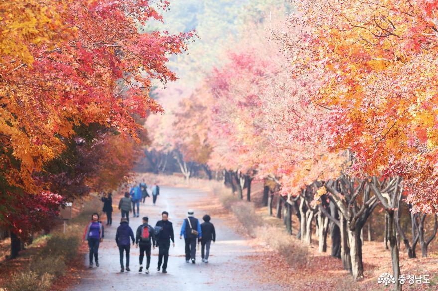 민족의 성지 독립기념관을 품고 있는 흑성산 산행기 4