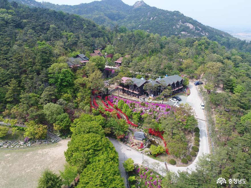 홍성군, 용봉산자연휴양림 방문객 대상