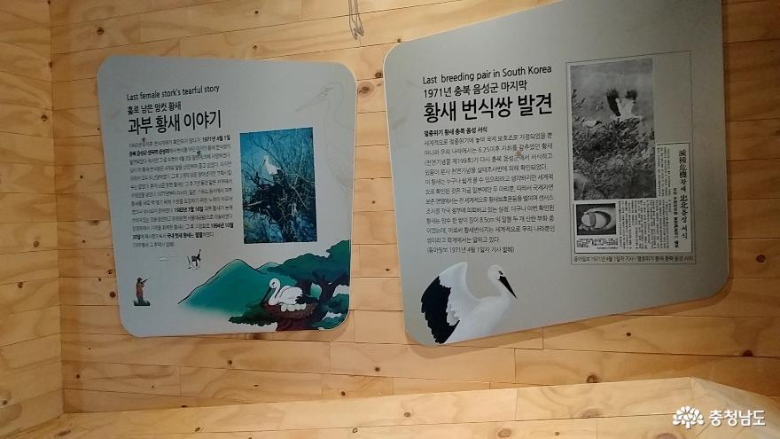 자연과 인간이 공존하는 황새들의 천국 <예산 황새공원> 4