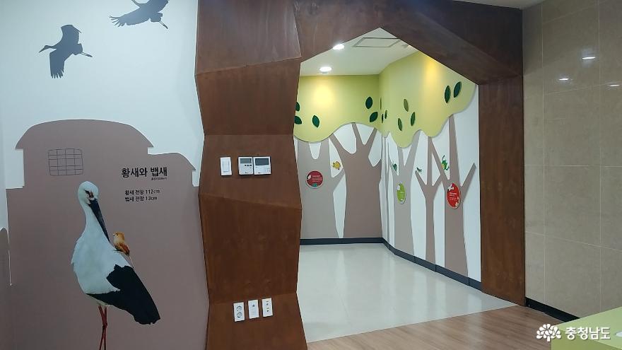 자연과 인간이 공존하는 황새들의 천국 <예산 황새공원> 19