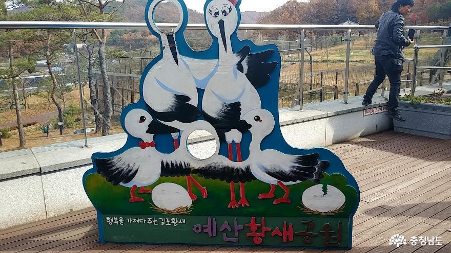 자연과 인간이 공존하는 황새들의 천국 <예산 황새공원> 31