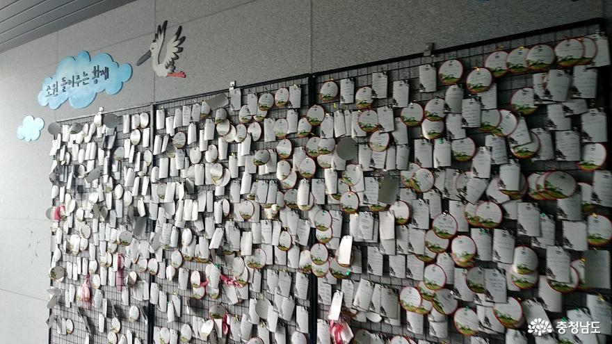 자연과 인간이 공존하는 황새들의 천국 <예산 황새공원> 33