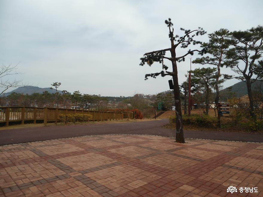 자연과 인간이 공존하는 황새들의 천국 <예산 황새공원> 34
