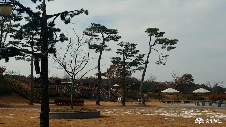 자연과 인간이 공존하는 황새들의 천국 <예산 황새공원> 37