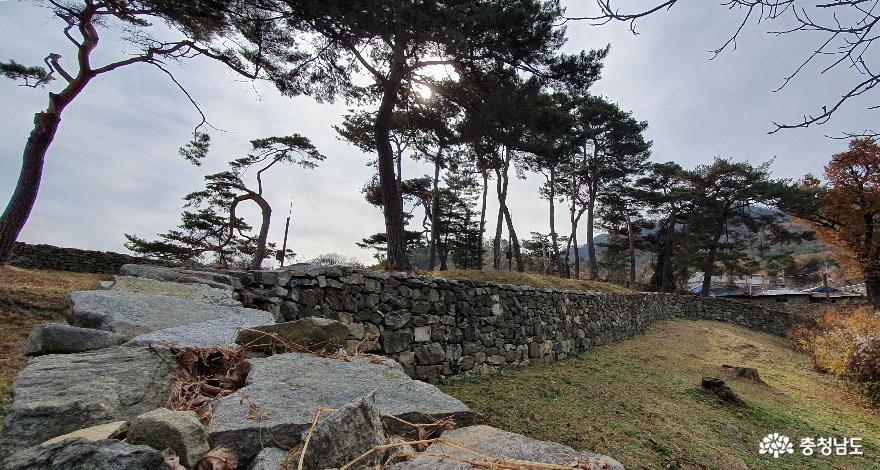 돌담으로 둘러처진 맹사성고택이 소나무와 조화를 이루고 있다.