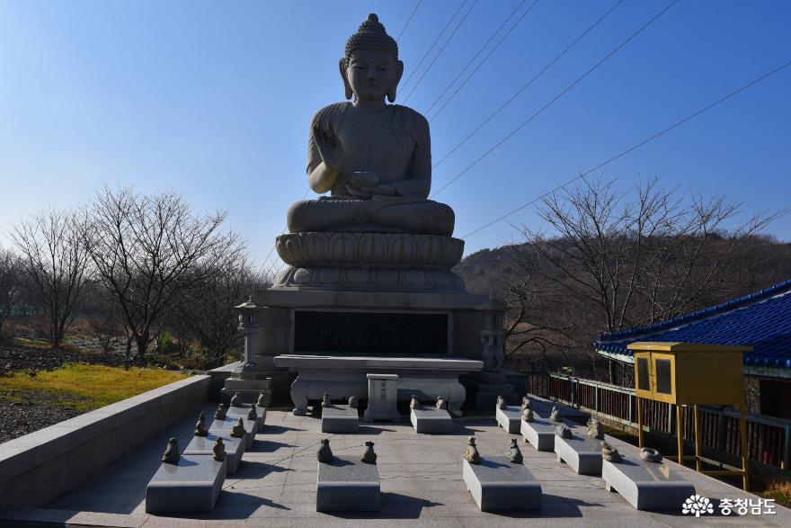 거대 부처님