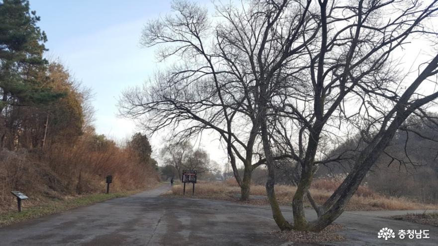 머릿속이 와글거릴 때 걷기 좋은 곳, 계룡시 두계생태공원 1