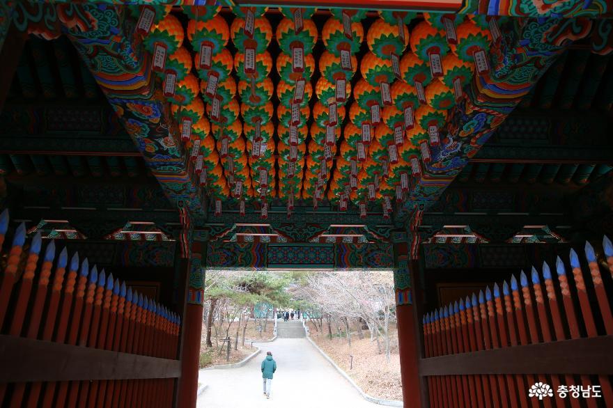 충남 천년고찰 수덕사로 떠나는 역사여행 사진
