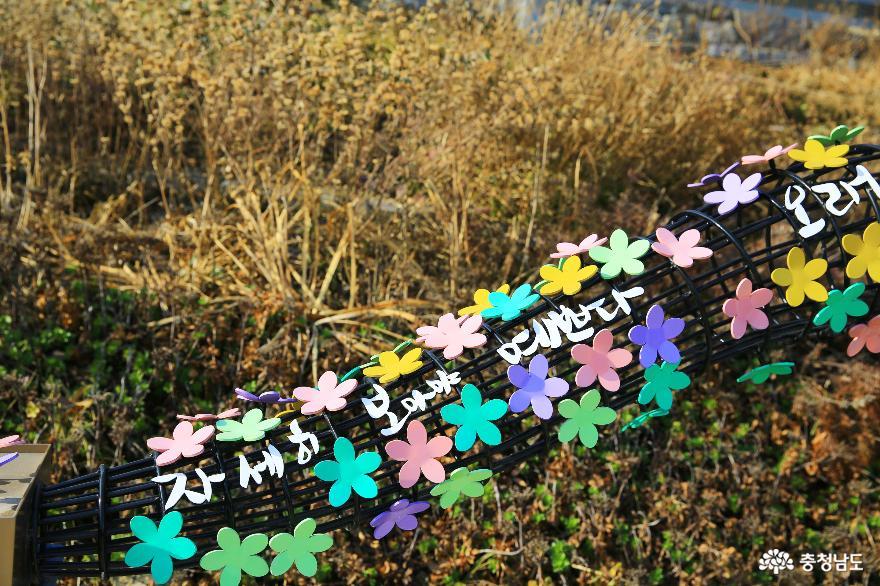 문학으로 소통하는 나태주 시인의 공주 풀꽃문학관의 겨울 3