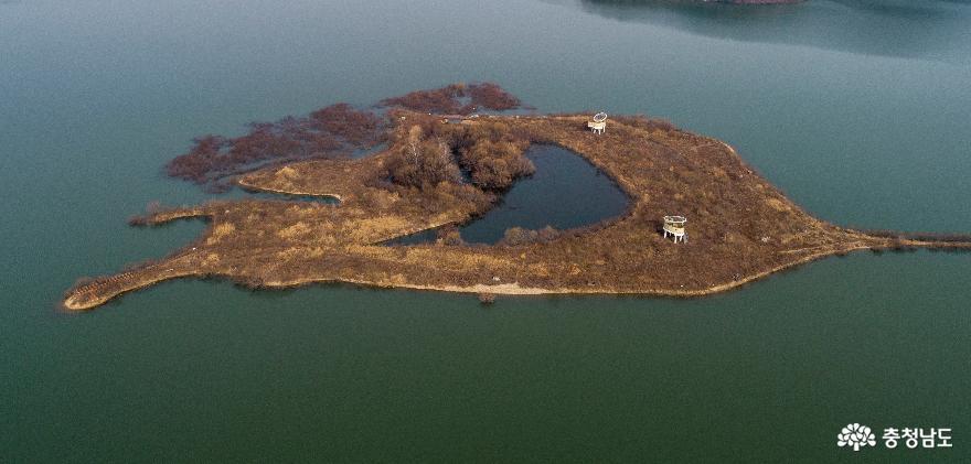 드론으로 담아 본 갈대나래섬의 겨울 풍경