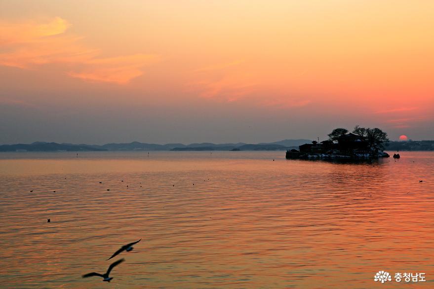 서산 일몰명소 간월암의 황금빛 일몰 13