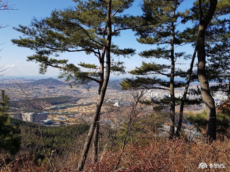 자연 속에서 사색을 즐기며 걷기 좋은 보령 옥마산 올레길 7