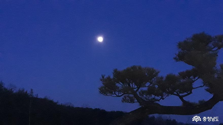정월대보름 저녁에 둥그렇게 떠오른 달. 코로나 바이러스가 무사히 물러나고 내년에도 변함없는 달빛을 볼 수 있기를 기원한다.