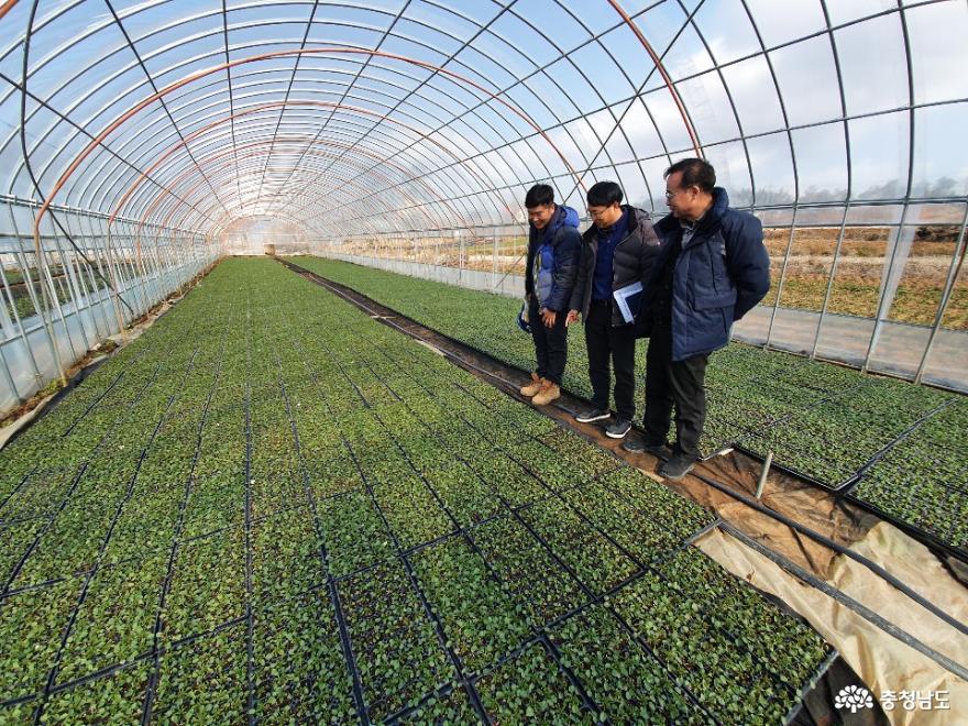 미래농업 이끌 청년농업인 컨설팅 실시