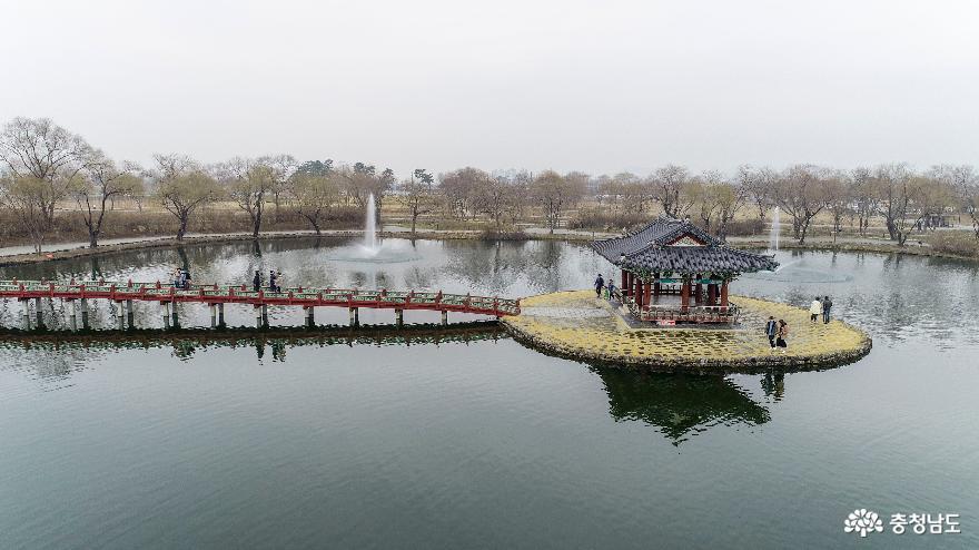 봄이 오는 부여 궁남지의 풍경