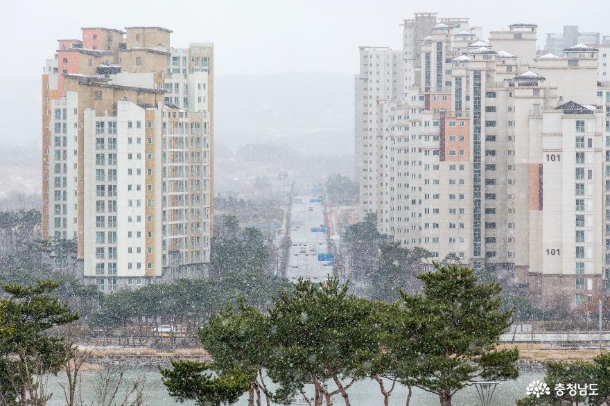 눈 내리는 내포신도시의 풍경