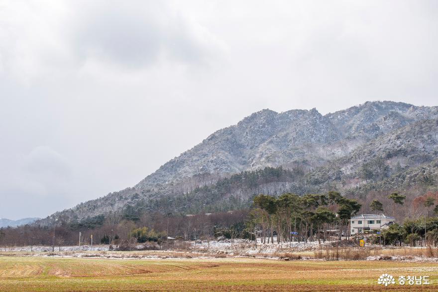 눈 내리는 내포신도시의 풍경 사진