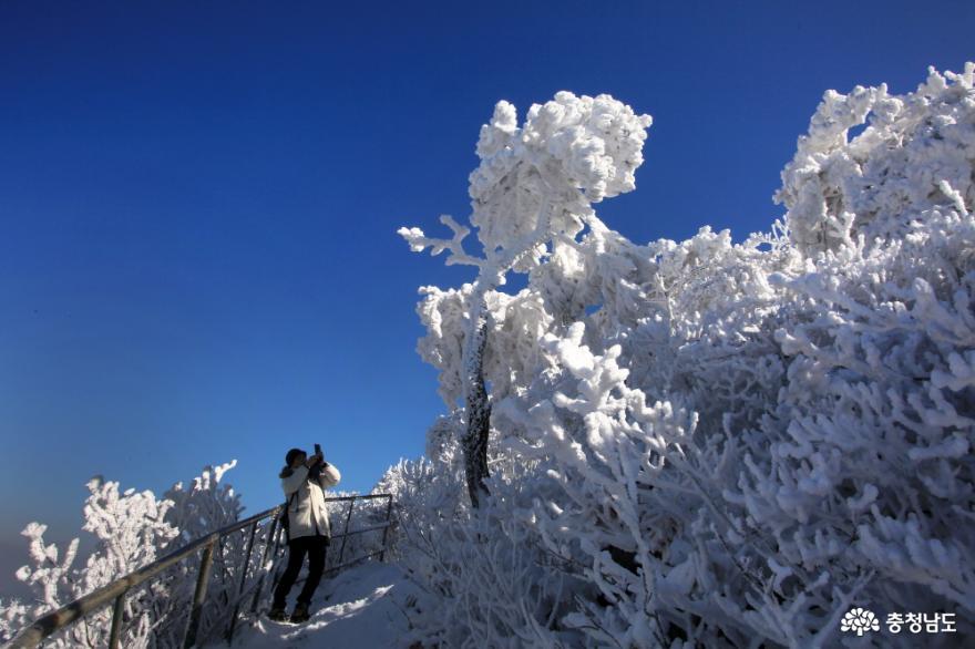 겨울왕국 계룡산 탐방기 3