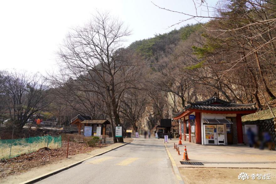 봄이 기다려지는 고즈넉한 계룡산 동학사 사진
