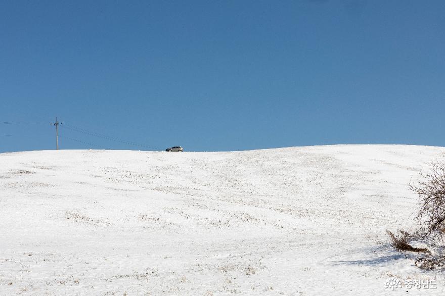 겨울의 끝, 서산목장의 '환상적인 설경' 5