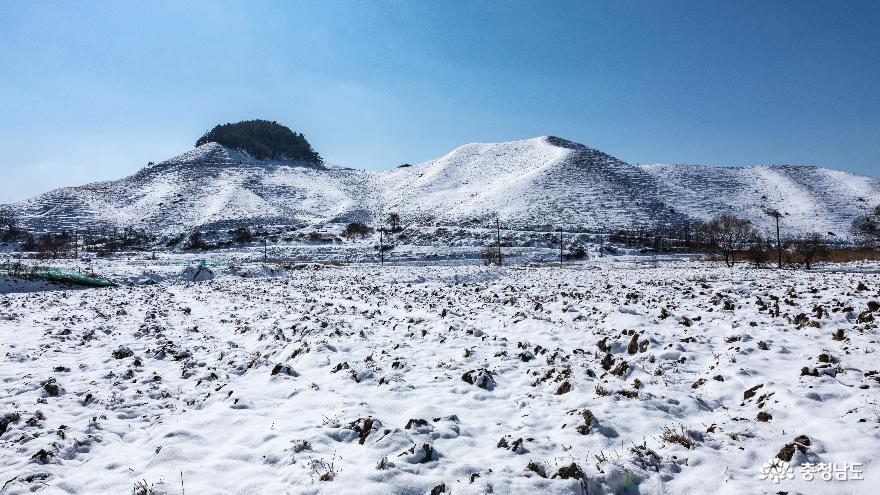 겨울의 끝, 서산목장의 '환상적인 설경' 6