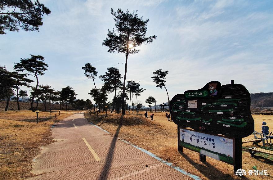 소나무숲 보며 산책하는 곳, 고마나루 9