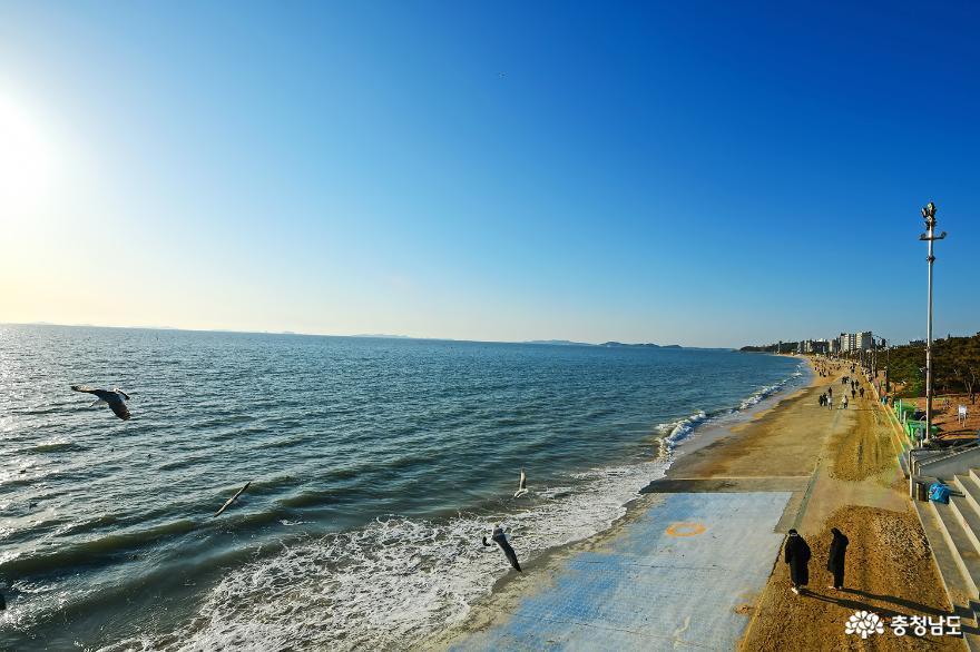 시원한 바다 일몰이 아름다운 대천해수욕장 사진