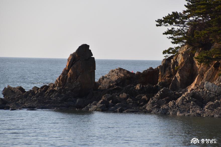 만리포해수욕장 갯바위