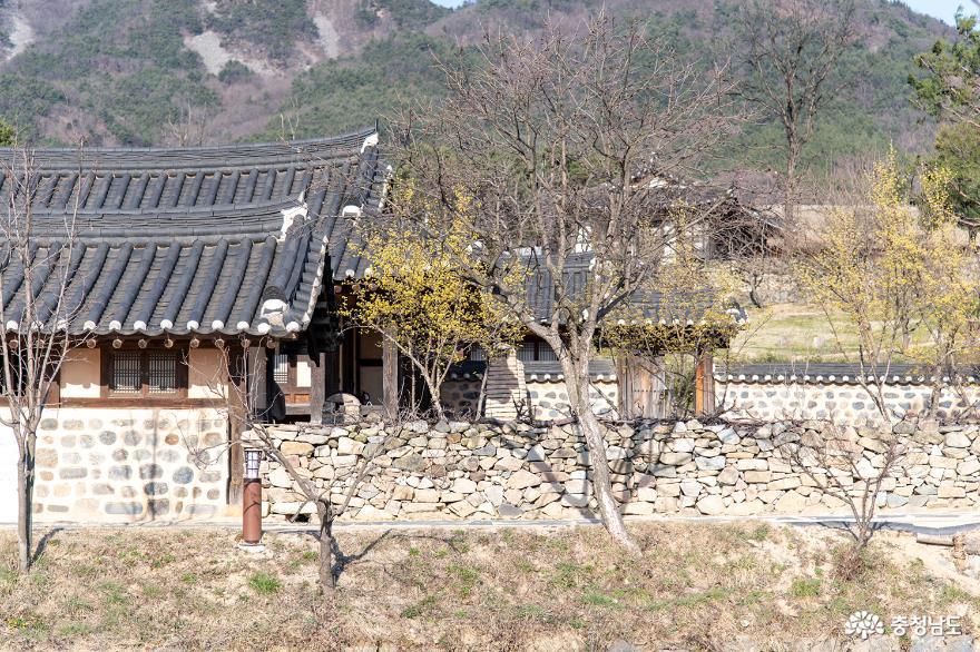 아산 외암민속마을의 봄 발길을 돌리며