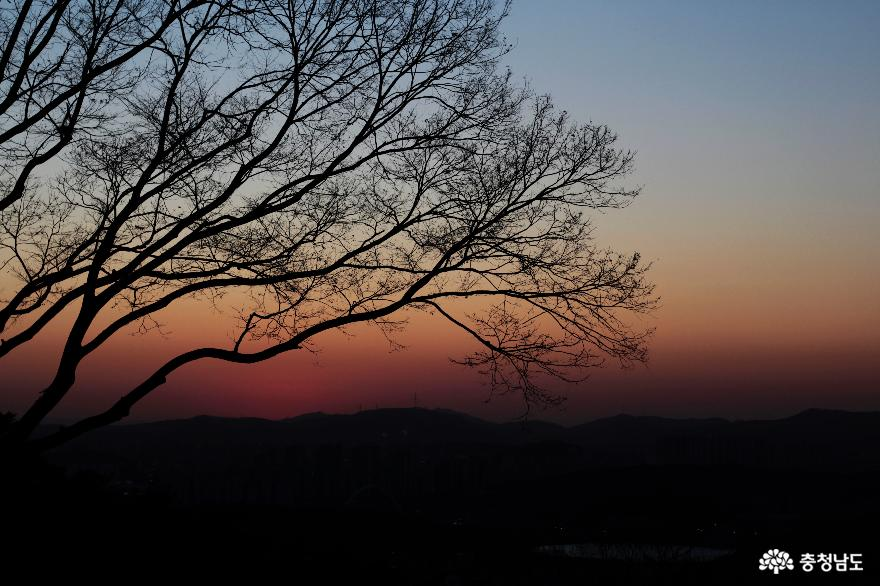 해질녘 성불사의 봄