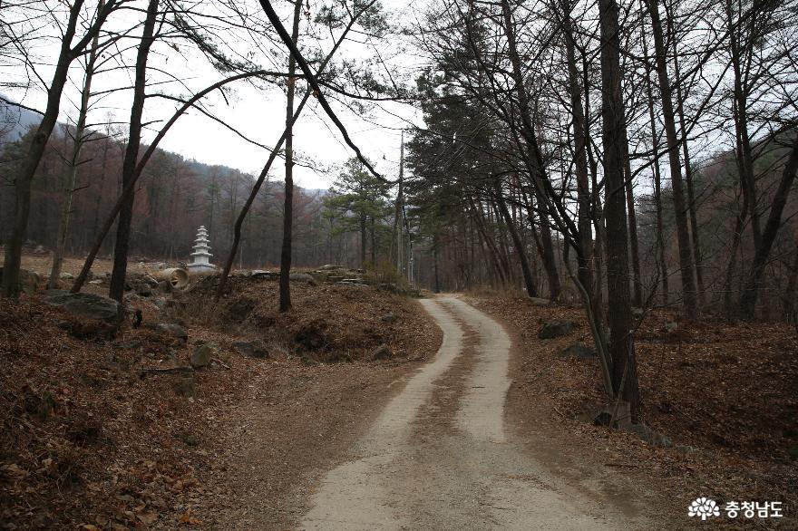치유의 숲이 조성되고 있는 계룡 향적산과 무상사 5