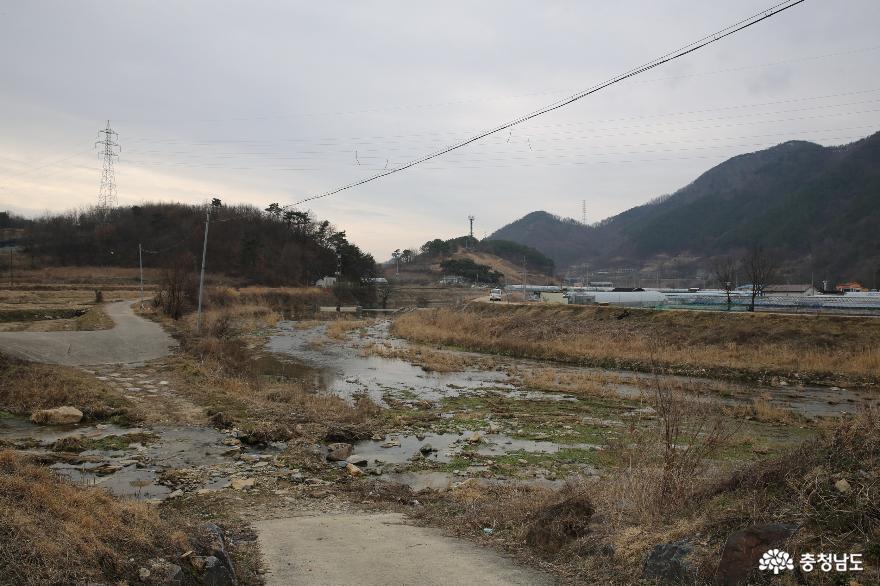 대청호 보전 우수마을과 오래된 요광리 은행나무