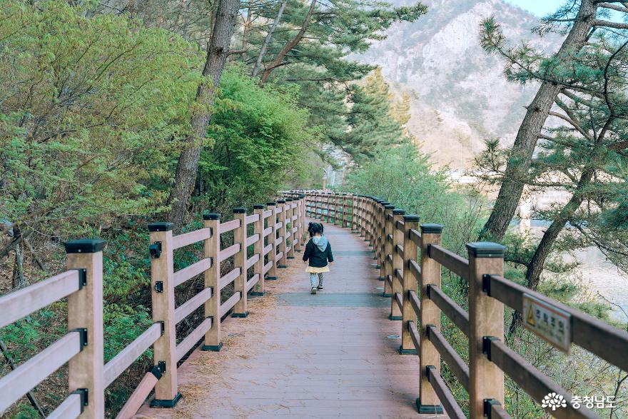 아이와 함께 떠난 금산 여행 -②적벽강, 기러기공원캠핑장 9