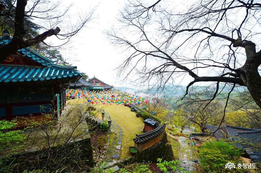 고즈넉하고 아름다운 봄, 천안 태조산 성불사