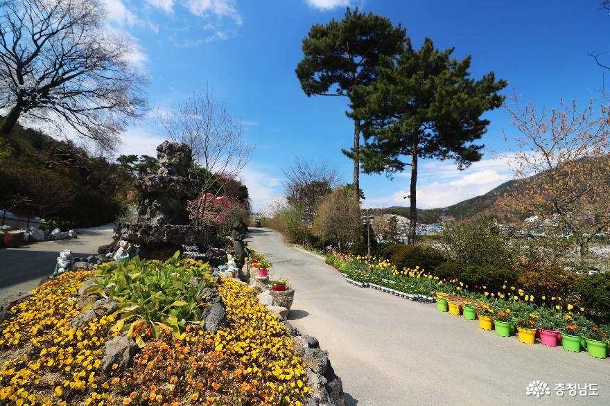 신비로운 꽃과 나무가 가득한 아름다운정원 화수목 2