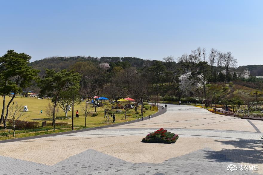 논산 시민공원에서 꽃길만 걷자