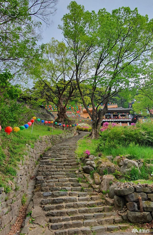 천년고찰 천안 성불사 대웅전을 오르는 계단길.