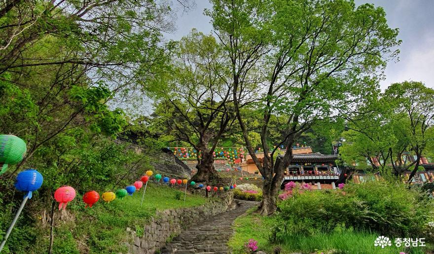 천안 성불사 대웅전을 오르는 계단길 2.