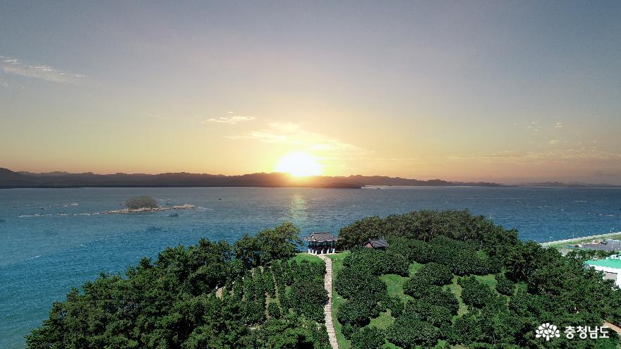 마량리 동백나무숲 재개장… 다시 돌아온 서해의 일몰 광경