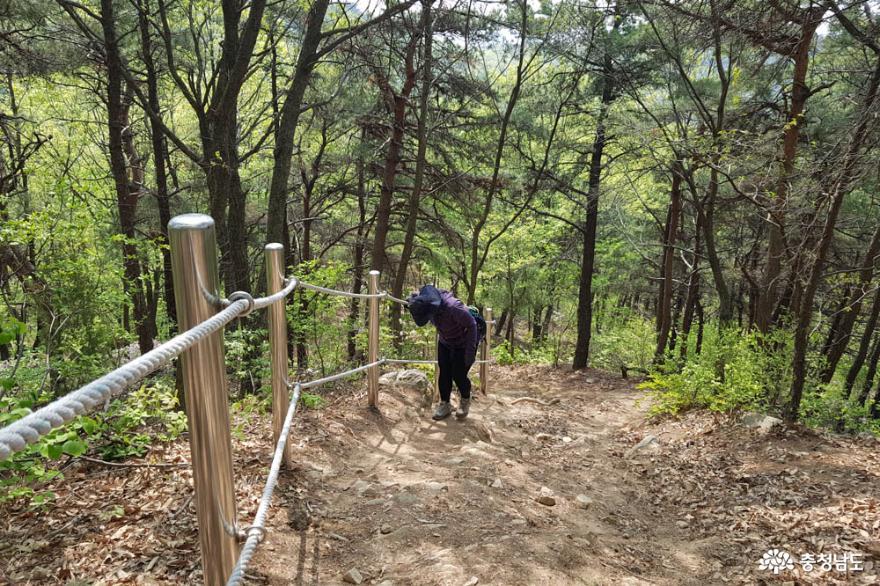 천안 은석산, 꽃 보며 등산할 수 있는 봄 산행지로 추천! 사진