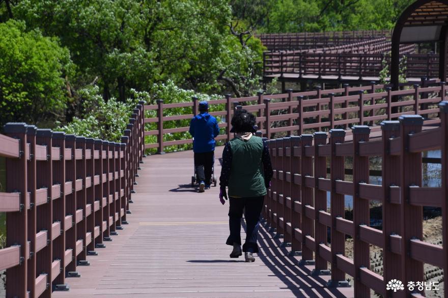 생활 속 거리두기를 하면서 느린호수길을 걷는 사람들