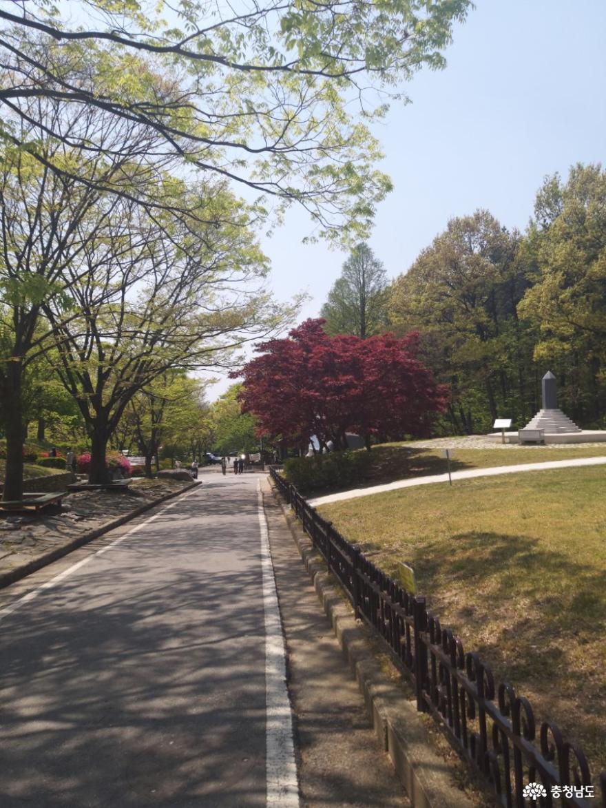 따스한 햇살 비추는 태조산보훈공원