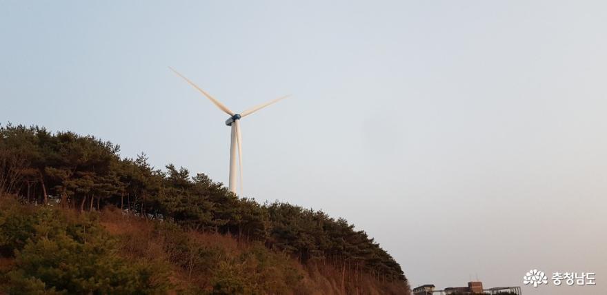 남당리 해안도로를 달리던 중 만난 풍역 발전기 2