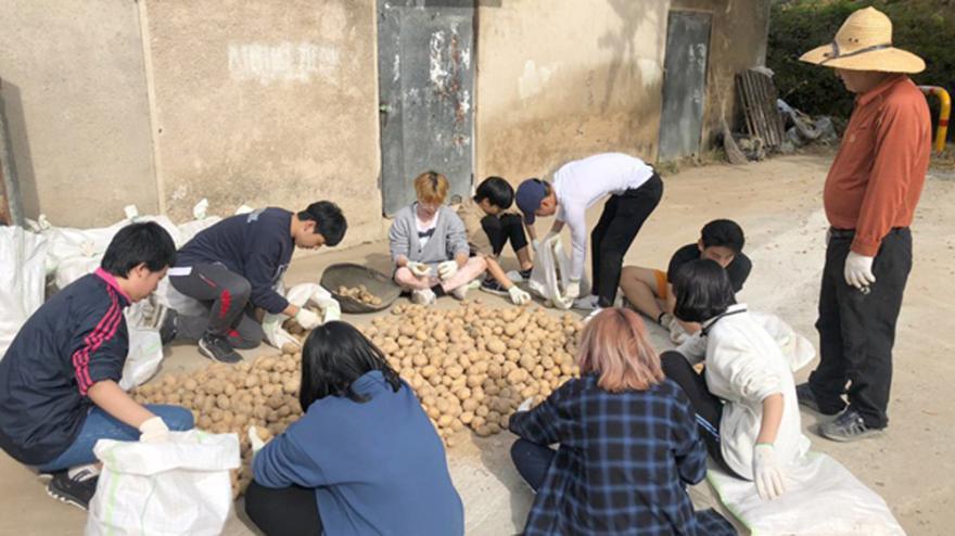 지난해 석동리 마을의 감자를 옮기기를 돕는 학생들의 모습.