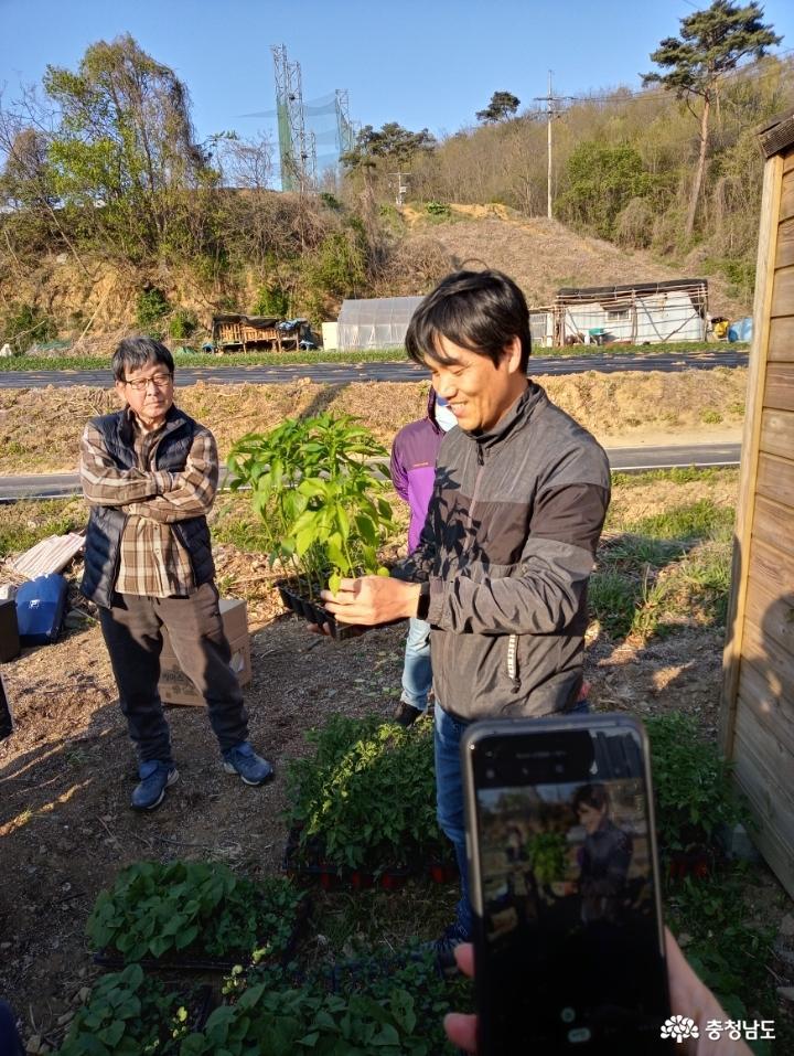흙 살리는 퇴비 만들기 15