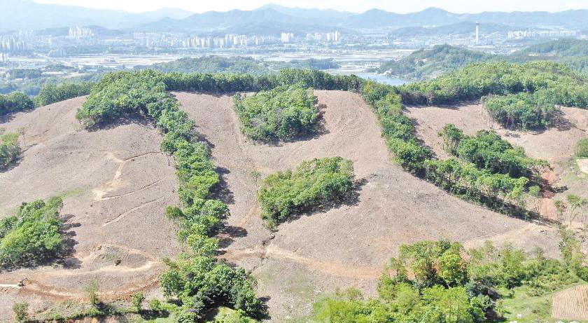 바람(風) 모양 친환경벌채지 복구