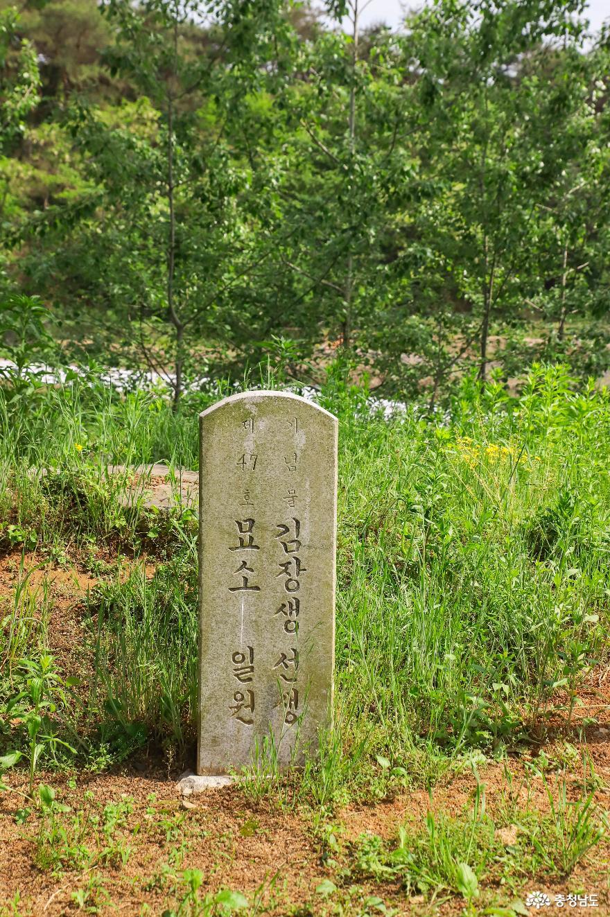 충청남도 기념물 김장생선생묘소 일원