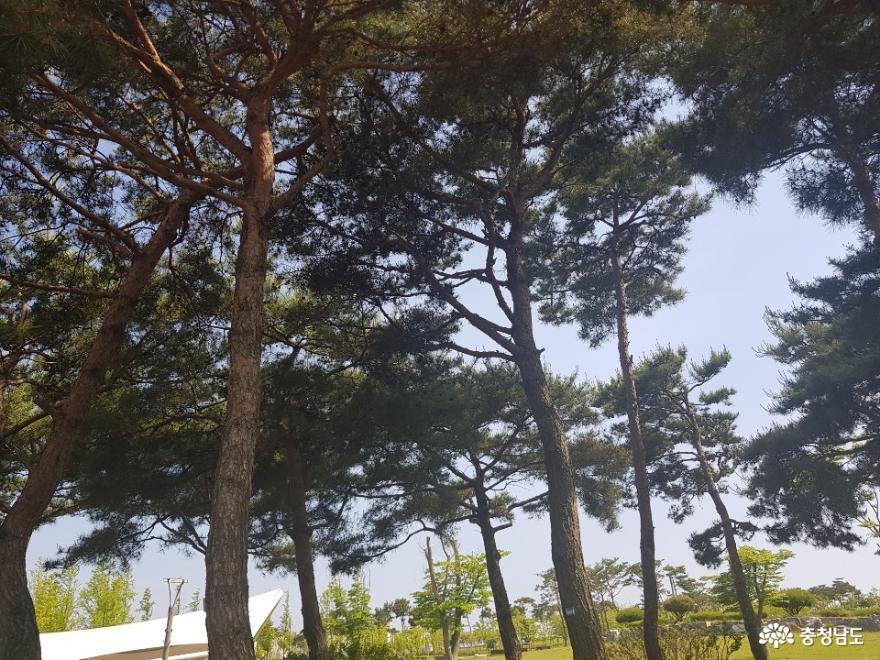 역사를 생각하게 되는 홍성 홍예공원 1