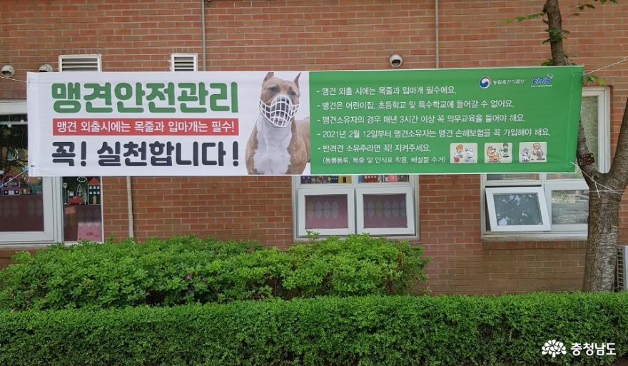 충남도, 성숙한 반려동물 문화 조성을 위한 홍보캠페인 실시 5